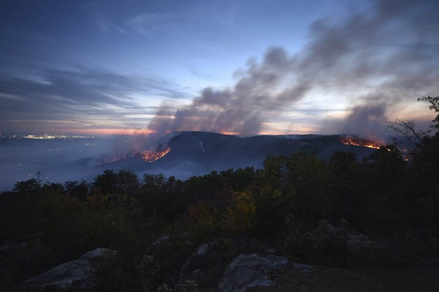 Photo of the wildfire Source- NBC News