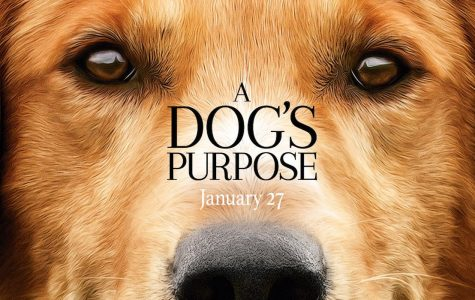 "Film Fiend: With Regards to… ""A Dog's Purpose"""