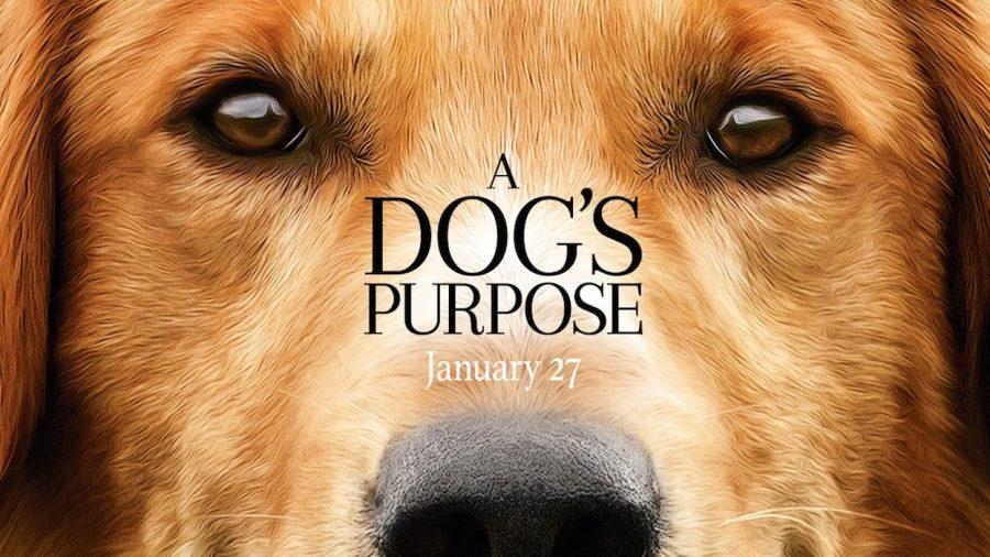 Film+Fiend%3A+With+Regards+to...+%22A+Dog%27s+Purpose%22
