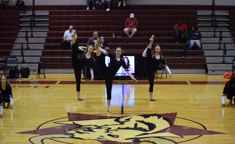 Wiregrass Dance Team impresses