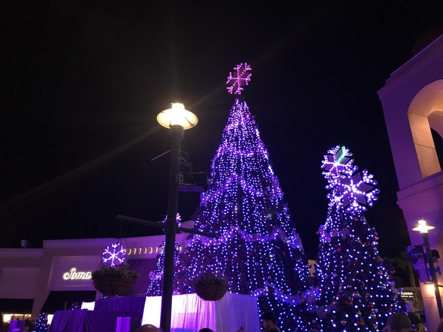 This Christmas tree lighting happens at the Wiregrass Mall for family and friends to injoy.