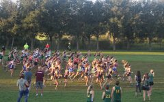 "Wiregrass puts up a valiant effort in the ""Run With the Bulls"" Invitational Meet"