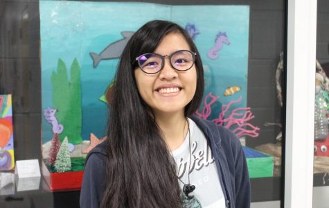 Senior Patricia Deogracias will have her artwork at the Florida State Fair.