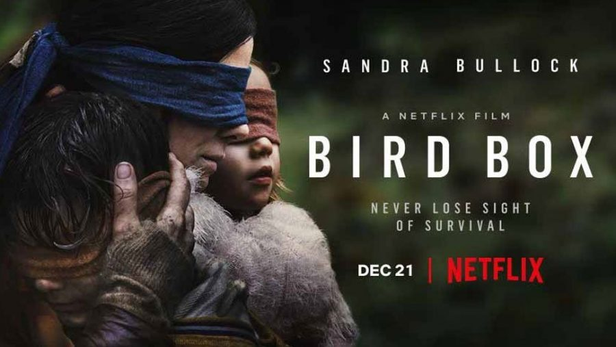 The Banner Of Bird Box