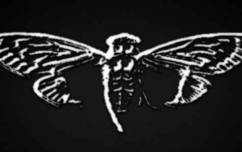 Cicada 3301: the online puzzle that stumped the brightest minds