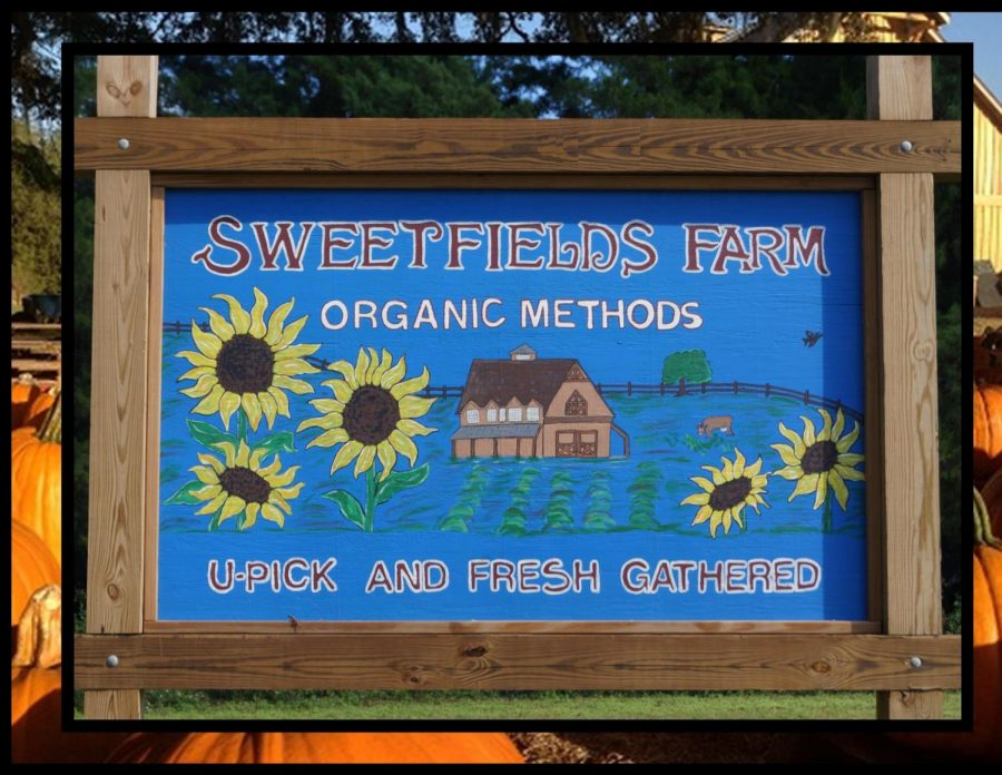 This is the front entrance sign, welcoming people into the farm!