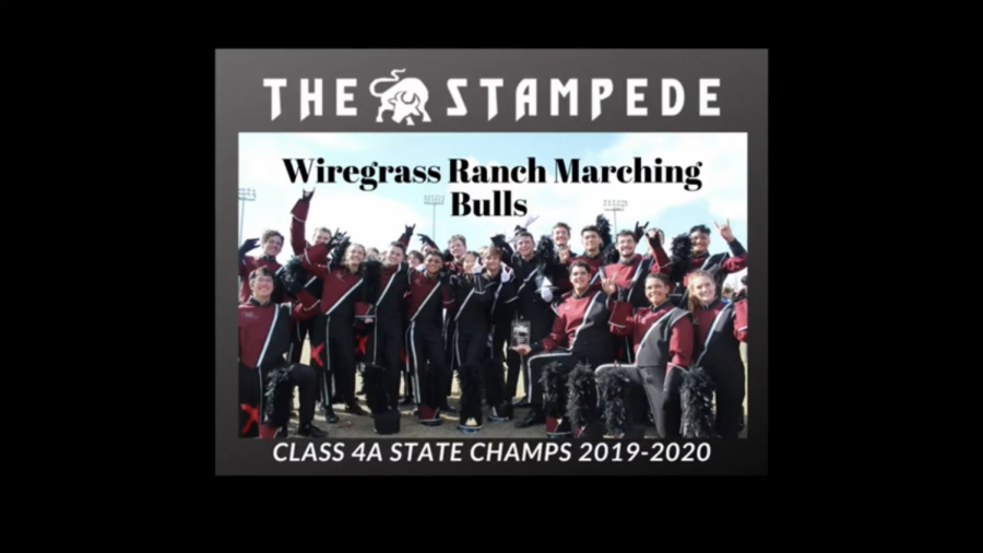 Wiregrass Ranch Marching Bulls at the State championship competition.
