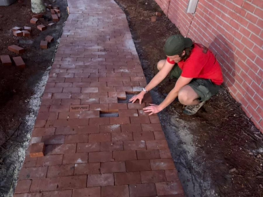 Hoehn's progress on his brick pathway