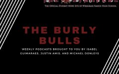 The Burly Bulls podcast focuses on Wiregrass sports.